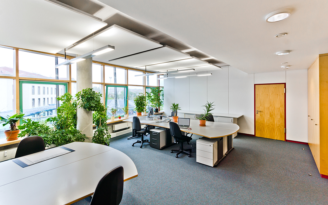 Biophilic Office Design – Bringing Nature into Your Pittsburgh Workplace